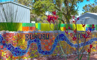 Term 1 – Week 2 Curtin News